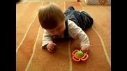 Бебе Търси Дрънкалка