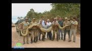 Най - Големите Животни На Света