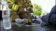 Пожарникар спасява котка