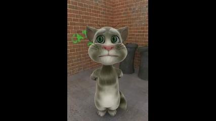 Поздрав с Шикури лудата котка - Много смях