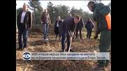3000 атласки кедъра бяха засадени на мястото на съборените незаконни ромски къщи в Стара Загора