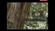 Проект Земята - Кой уби ацтеките Бг Аудио Част 1
