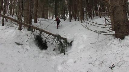 Зима в резерват Джинджирица