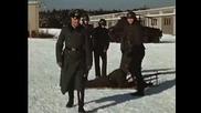 Войниците на Третия Райх