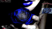 @ Brunuh Ville - Blue Rose @ H D