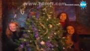Сборна формация - Коледа