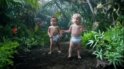 Виж Наистина от къде идват бебетата!