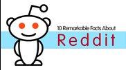 10 забележителни факти за Reddit - All Time 10s