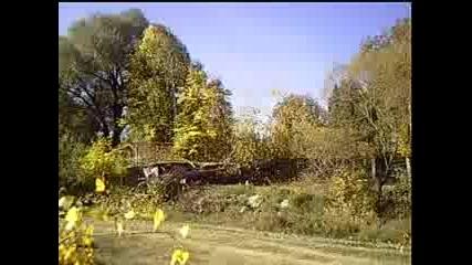 Дърво пада Върху Оградата На Съседа