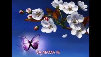 Мила Моя Мамо