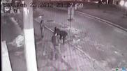Пиян краде и се бие със пътен знак