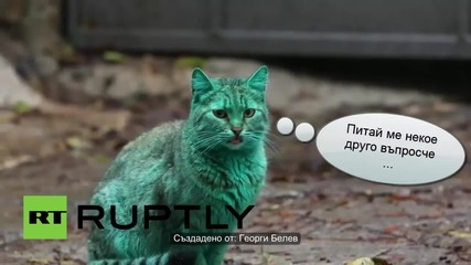Зелената котка от Варна - Пародия
