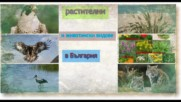 животински и растителни видове в България