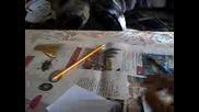 Как се рисува тиква