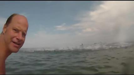 Невероятно – вълна от риби!