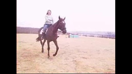 Втора езда с Дилема