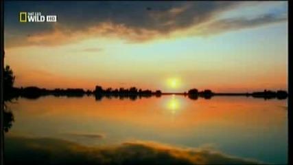 2/ Дунав: Европейската Амазонка