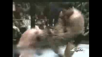 Brutal Ultimate Fight Knock Out