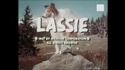 1969 Ласи - Lassie