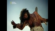 Кой уби Иисус? - Тайните на Кръста