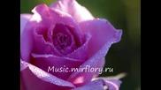 Виктор Петлюра - Жълта роза