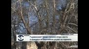 Гърменски чинар спечели второ място в конкурса за Европейско дърво на годината