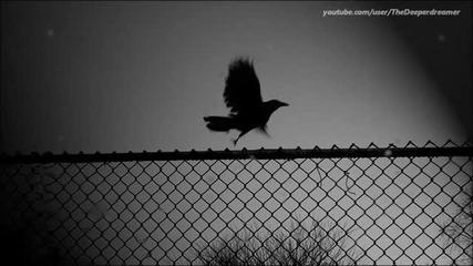 David Lacroix - Forgotten ( Original Mix )