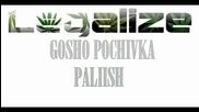 Гошо от Почивка - Палиш