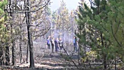 Горският пожар над Разлог е ограничен