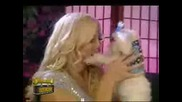 Wwe Torrie Talk About Her Dog Chloe