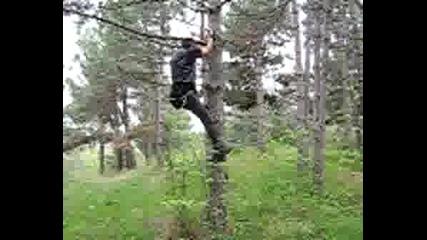 Мъро Се Катери На Дърво 2