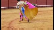 Корида - Севиля,  Испания #2