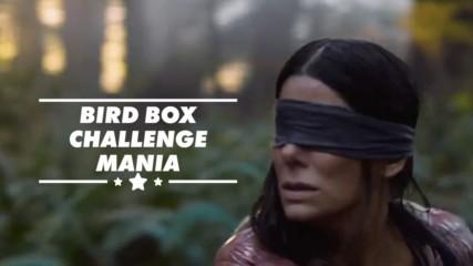 Netflix предупреди да се внимава с Bird Box Challenge