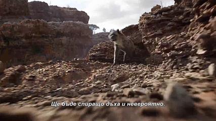 """Цар Лъв - видео зад кадър """"Завръщането на царя"""""""