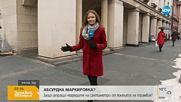 ГРАДСКИ АБСУРД: Опасна ли е пътната маркировка за незрящи в центъра на София?