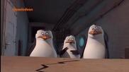 Пингвините от Мадагаскар ep36