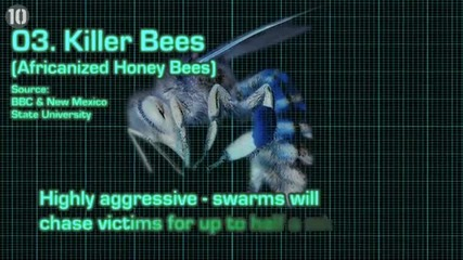 10-те най опасни насекоми