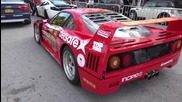 4k Ferrari F40 on the starting grid for Gumball 3000 Ocean Drive Miami to Ibiza