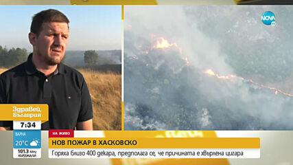 Пожарът в Хасковско е овладян