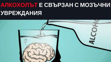 Алкохолът е свързан с мозъчни увреждания