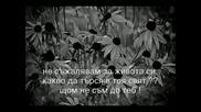 Sinan Sakic `-` Ще Умра С Усмивка ]превод[