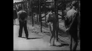 Холокостa
