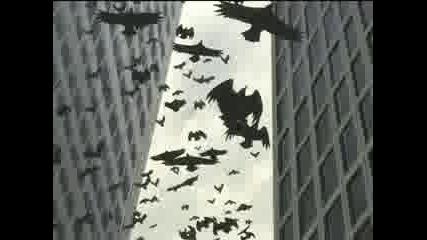 Wolfs Rain (opening credits)
