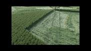 Crop Circle Video - Stock footage of Crop Circles6