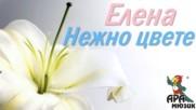 Елена - Нежно цвете 2000
