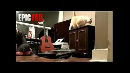 Как Котката Може Да Те Прецака
