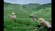 Анимация - Реклама На Чай - Видео клипове - Клиповете.ком
