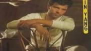 Philippe Chatel - Yin-yang - 1982