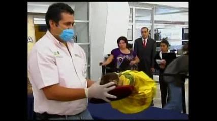 Страховити мумии в Мексико