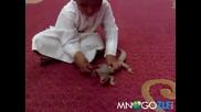 Дете срещу гущер